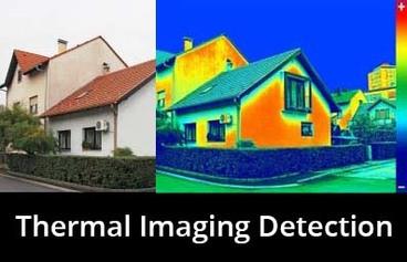 thermal imaging detection